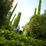 Botanische tuinen 10 min